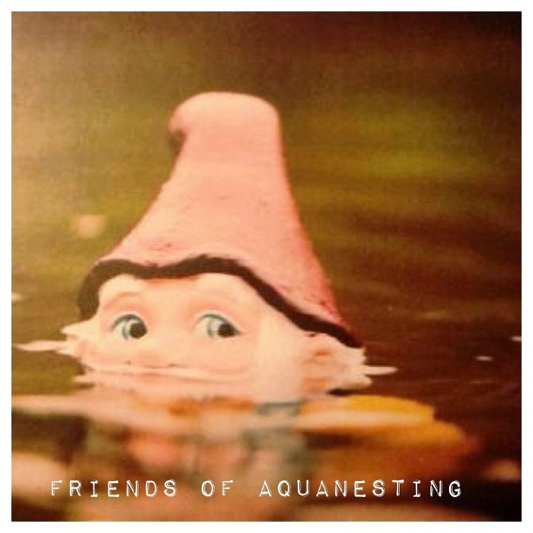 Dr. Vincenzo Di Spazio: Friends of Aquanesting® – Ed. speciale Hotel Garden Terme